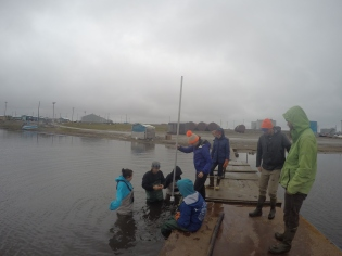 Sediment coring in Kaktovik lagoon on Geology Day!