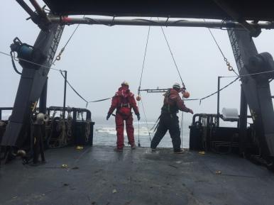 The crew deploying the trawl net