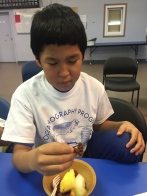 Paul tasting a baby octopus for the first time at our Culture Day!