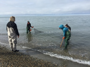 Lead instructor Cliff Strain teaches the students to pull a seine net