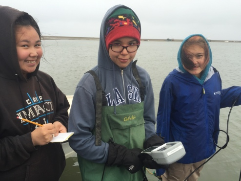 Using a data sonde to collect water quality information throughout the lagoon water column